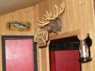 Moose head and prize fish