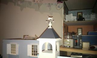 11. missing cat weathervane.jpg