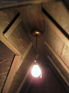 Lighting Bug hanging bulb fixture