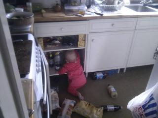 3. Cleaning Out The kitchen cupboard