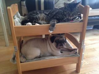 IKEA Doll Beds -- Bunks!