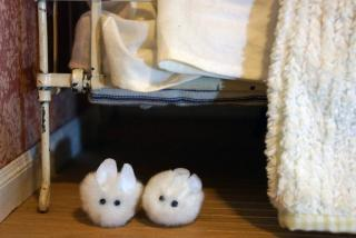 Bunny Slippers.