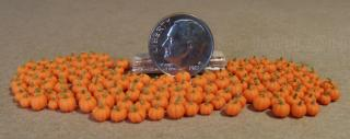 micro miniature pumpkins 2014 quarter inch scale