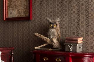 Great Horned Owl Taxidermy Mount