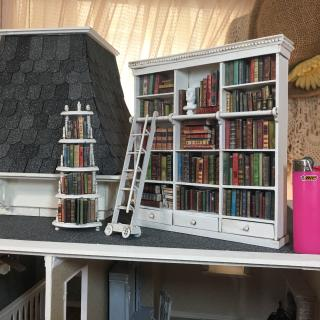 Bookshelves for Library