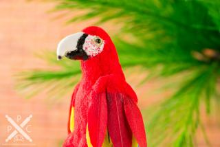 conservatory-macaw-02.jpg