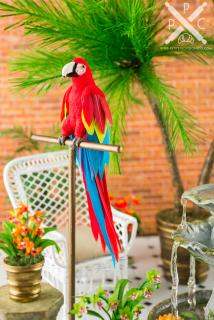 conservatory-macaw.jpg