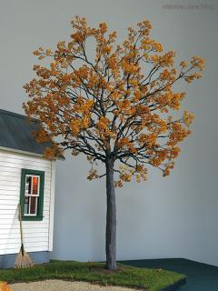 Autumn tree planted