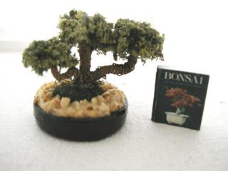 Bonzai and Book