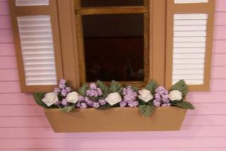 Close up of Window Boxes